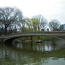 Central Park Bridge, Spring Colors, New York by lenspiro