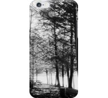 Sunlight through Grainy Trees iPhone Case/Skin