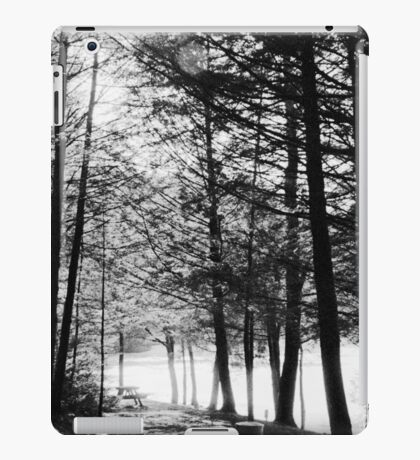 Sunlight through Grainy Trees iPad Case/Skin