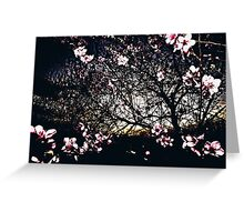 Spring in Bloom Greeting Card