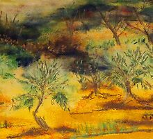 The Olive Grove, Strath Creek, Victoria, Aust by Margaret Morgan (Watkins)