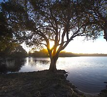 Sunset over Lake Ainsworth by Daniel Rankmore