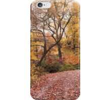 Autumn in the Azalea Garden iPhone Case/Skin