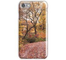 Autumn in the Azalea Garden iPhone Case/Skin