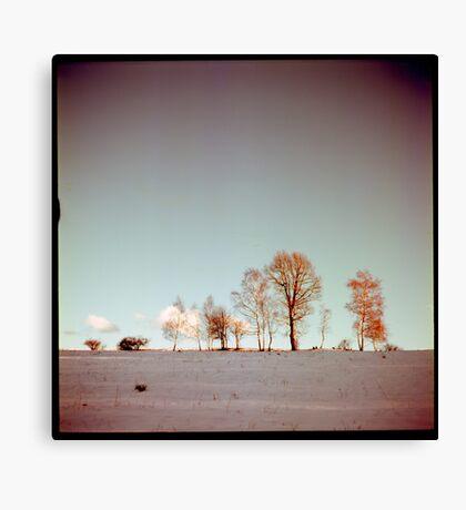 Winter horizont Canvas Print