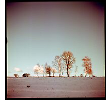 Winter horizont Photographic Print