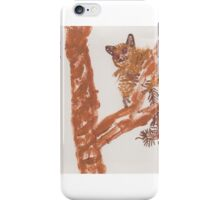 ART FUN by Cheryl D rb-44 iPhone Case/Skin