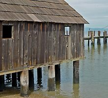 China Camp Building by Scott Johnson
