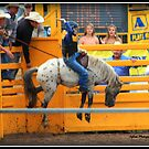 Mini Bronc Rider 2 by SylanPhotos