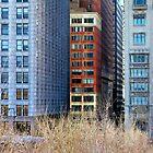 Windows of Chicago by Brian Gaynor