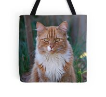 I Come to Visit Tote Bag