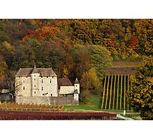 Autumn in the french vineyard Photographic Print