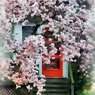 Magnolia by Red Door by Susan Savad