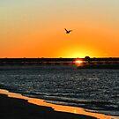 Sunset III by bonhy