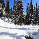 Deep snow by zumi