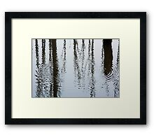 Water Forest Framed Print