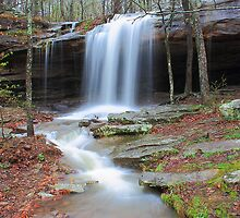 Upper Haley's Falls of Arkansas by David  Hughes