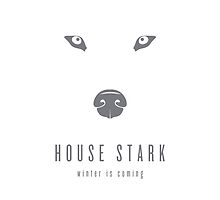 House Stark Minimalist iPhone Case by liquidsouldes