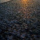 Sun on Stone by dgscotland