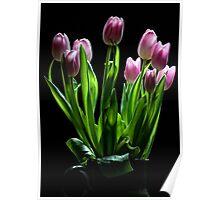 Spring Tulips in Vase Poster