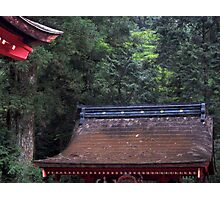 wooden roof Photographic Print