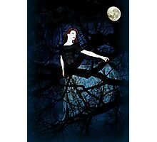 Wrapped in Night Photographic Print