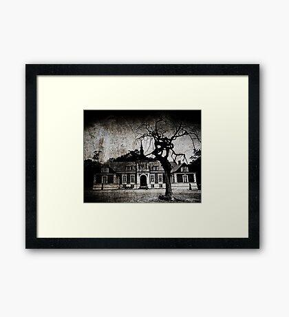 The mansion Framed Print