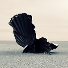 The Shell at Aldeburgh by Phill Sacre
