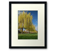Avon- Riverside view Framed Print