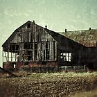 Abandonment Issues by Rebecca Reist
