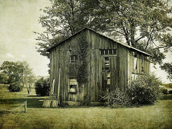 Ivy Barn by vigor