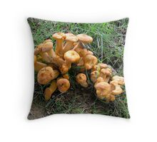 How many mushrooms can fit in one place? Throw Pillow