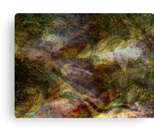 Elements of Earth Canvas Print