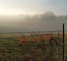 Fence Line by Dan Bartlett