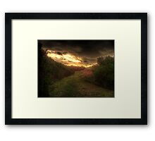Grass Path Framed Print