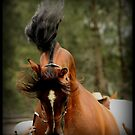Joda Allure by SylanPhotos
