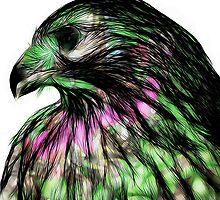 Hawk, v5 by pbnevins