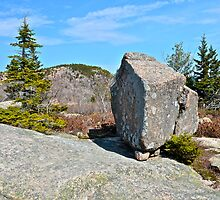 Glacial Erratic, Acadia National Park, Maine by Dan Hatch