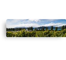 Rippon vineyard, Lake Wanaka Canvas Print