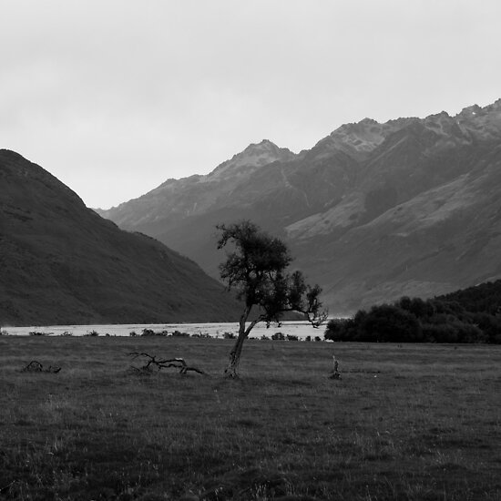 Lone tree by gematrium
