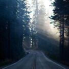 Smokey road by gematrium