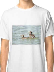Female Mallard (Anas platyrhynchos) (right) and juvenile swimming in the water.  Classic T-Shirt