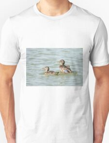 Female Mallard (Anas platyrhynchos) (right) and juvenile swimming in the water.  T-Shirt