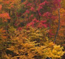 Autumn Colors Sticker