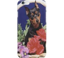 My Beloved Remy... iPhone Case/Skin