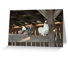 Roosting in East Tennessee Greeting Card