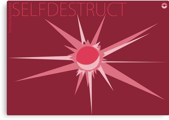 Selfdestruct by Archymedius