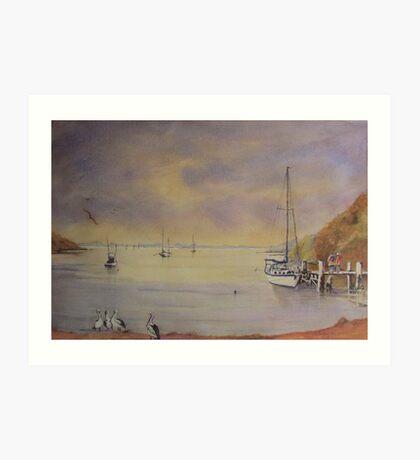 Early morn Orient Point near Nowra N.S.W. Art Print