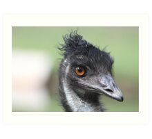 Emu - Keith Art Print