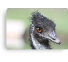 Emu - Keith Metal Print